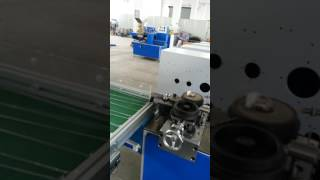 SB41L packing machine Nanjing Saiyi Technology Co ,Ltd