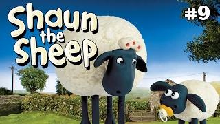 Shaun the Sheep -  Wash Day S1E8 (DVDRip XvID)