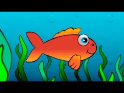 Çocuk şarkıları Kırmızı balık gölde orijinal müzik ve sözleri