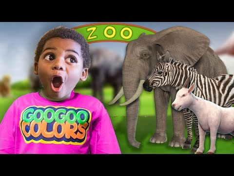 Xxx Mp4 ZOO ANIMALS PRETEND PLAY HIDE N SEEK With GOO GOO GAGA LEARN TO COUNT TO 5 3gp Sex