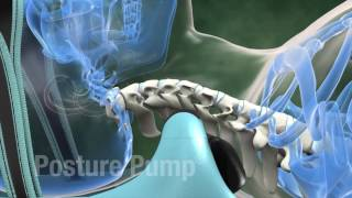 The Greatest Device for Spinal Health!