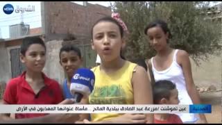 عين تموشنت: مزرعة عبد الصادق ببلدية المالح... ماساة عنوانها المعذبون في الأرض