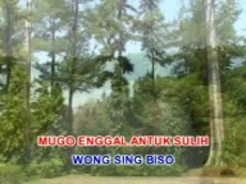 Pamitan Gesang Langgam Jawa SD 3 Megawon