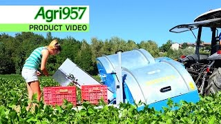 NEW GREEN BEANS and BEANS HARVESTER - FONTANA srl | Raccoglitrice FAGIOLINI e FAGIOLI | ProductVideo