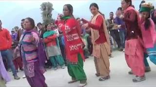Himachali Pahari Marriage Nati Songs Neelma Neelma Mhairi Neelma ! (शान ऐ चुहार घाटी)