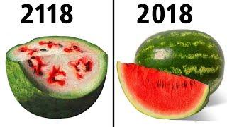 ماذا سيحدث لطعامنا بعد مئة عام من الان؟