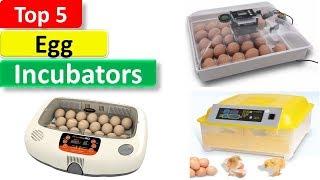 Top 5 Egg Incubators In 2018 || 5 Best Egg Incubators Reviews ||