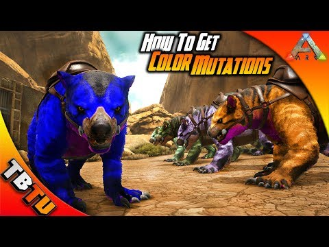 BEGINNERS GUIDE TO MUTATIONS! BEST WAY TO GET COLOR MUTATIONS! Ark Survival Evolved