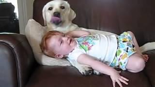 الكلب والطفل - طرائف
