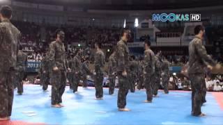 Taekwondo display by the Korean army at the 2013 Hammadang