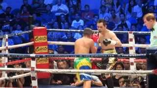NONITO DONAIRE VS WILLIAM PRADO TKO 3.28.2015 IN ARANETA COLISEUM