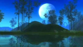 秋宵步月 古琴- Autumn Sound Sleeping Music Chinese Guqin Meditation Relax