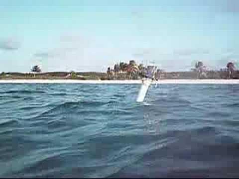 Spar Buoy model in medium waves