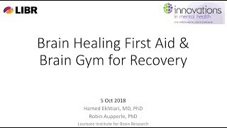"""Introducing """"Brain Healing First Aid"""" and """"Brain Gym for Recovery"""" Programs, Zarrow2018"""