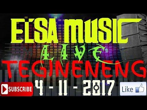 ELSA MUSIC LIVE TEGINENENG (3)