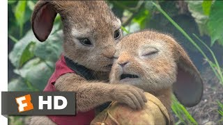 Peter Rabbit (2018) - Playing With Fire Scene (8/10) | Movieclips