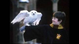 Harry Potter and the Sorcerer's Stone Soundtrack - 18. Leaving Hogwarts