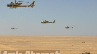 Egyptian Army In Action