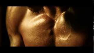 Nouveau Film de Tony Jaa : L'honneur du dragon 2 (Octobre 2013)