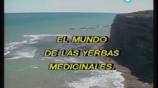 """""""Historias de la Argentina secreta"""": la polémica por las hierbas medicinales, 1990"""