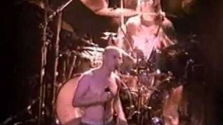 TOOL: Hooker with a penis live