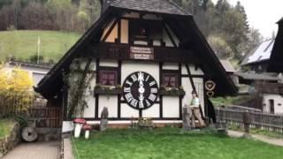 El Reloj de Cuco más grande del Mundo, Triberg