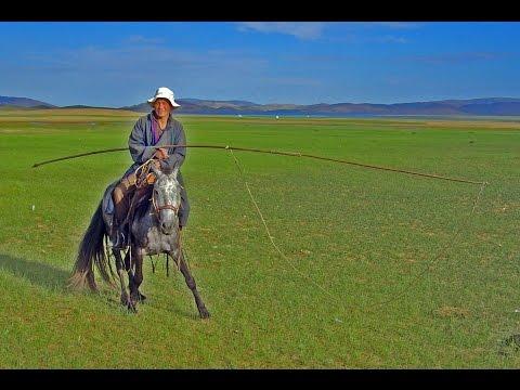 Cazando caballos en Mongolia