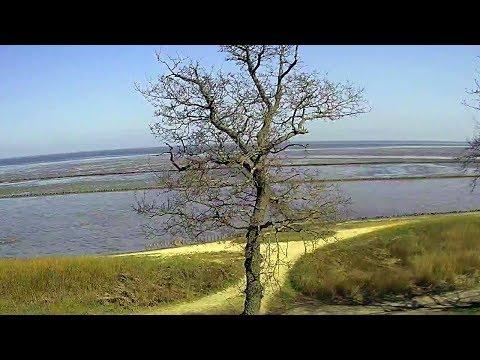 Xxx Mp4 Sylt Live Webcam Aus Keitum Mit Blick Auf Das Wattenmeer 3gp Sex