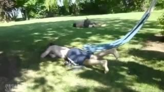 INTENTA VER ESTE VIDEO SIN REIRTE FAILS #2// PARA MATARSE DE LA RISA