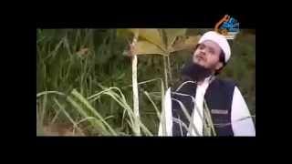 Download বন্ধু ভুলে যেওনা কখনো-আঈনুদ্দীন আল আজাদ 3Gp Mp4