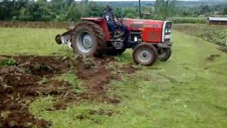 Massey Ferguson 375 with disc Plough