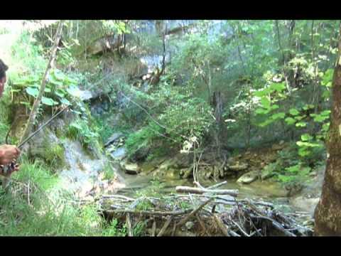 Pesca alla Trota nei fossi di montagna