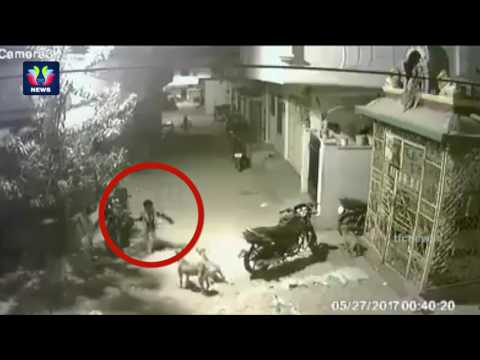 Caught on CCTV | Dog Attack | Brave Boy Fight With Dog to Save Himself at Kukatpally | TFC News