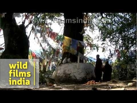 Arunachal Pradesh - the Unexplored Paradise