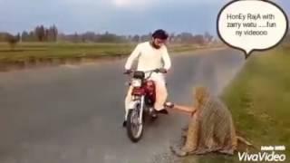 पाकिस्तानी भिखारी