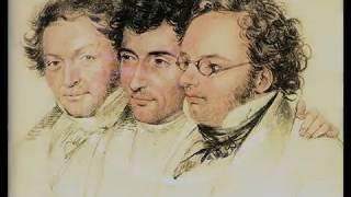 Schubert - Walter Klien (1972) Sonata No 4 in A minor, D 537