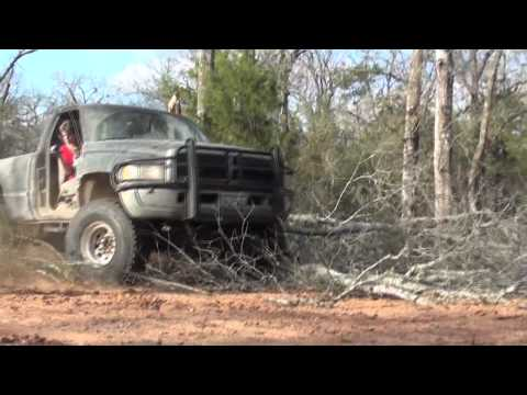 Dodge Ram Tree Crushing In College Station