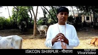 ISKCON SHirpur - gaushala