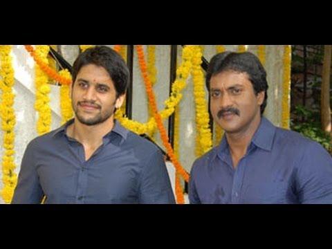 Xxx Mp4 Sunil Highest Collections In My Career For Tadakha Tadaka Telugu Movie Success Meet L Comedy 3gp Sex