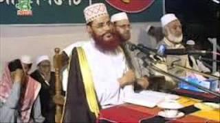Bangla Waz - Awami League Mosolmander Dushman - Maulana Delwar Hossain Sayeedi