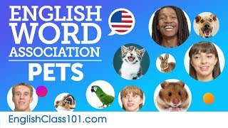 Pets Word Association with English speakers