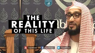 The Reality of this Life - Moutasem Al Hameedy