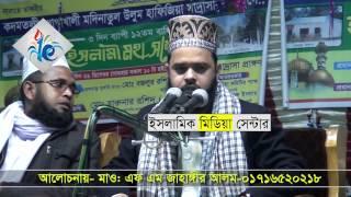 Bangla waz 2017  মাওঃএফ এম জাহাঙ্গীর আলম।Maulana FM Jahangir Alam