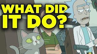 Rick and Morty 4x04 SECRET CAT ORIGIN Revealed!   Ricksplained