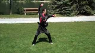 Shaolin Kung Fu Beginner | Beginner Kung Fu Form