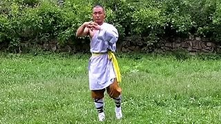 Shaolin kung fu basic training 1