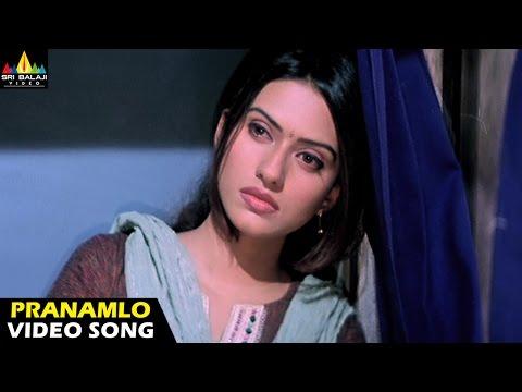 Andhrudu Songs | Pranamlo Pranamga Video Song | Gopichand | Sri Balaji Video