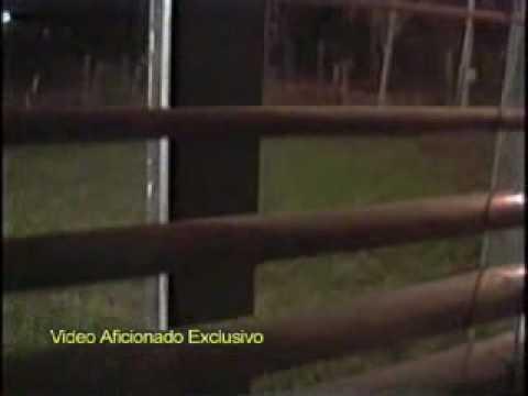 Vídeo Videos de extraterrestres reales