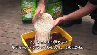 Kitty's Crumble - Japanese HD