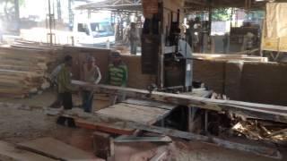 Shree Hinglaj Timber Mart